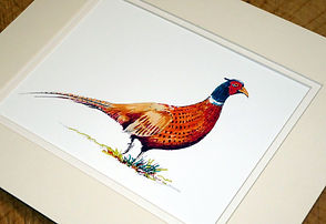 10 x 12 pheasant print 3.jpeg