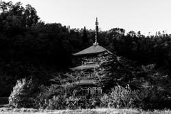 安久津八幡宮