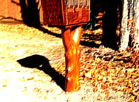Rustic mailbox with cedar door in AZ