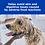 Thumbnail: Hills PD Canine Z/D 3kg