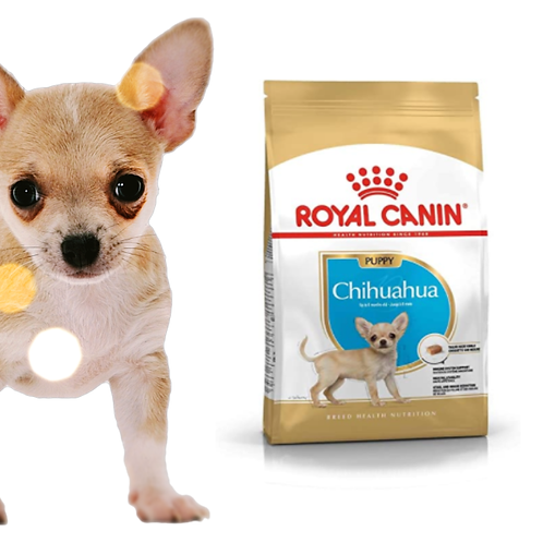 Breed Health Nutrition Chihuahua Puppy 1.5kg