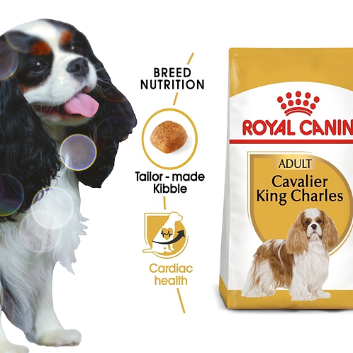 Breed Health Nutrition Cavalier King Charles Adult 1.5kg
