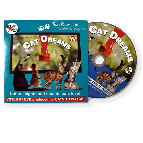 GoCat Cat Dreams DVD