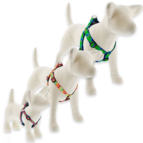 Lupine 3/4 Step In Harness