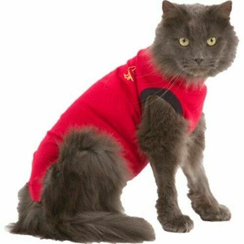 Cat Medical Shirt
