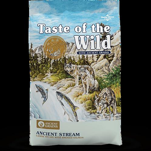 Ancient Stream Canine Recipe -Salmon