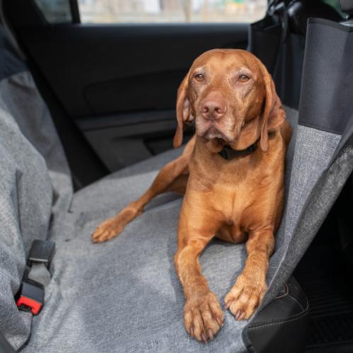 Bergan Hammock Seat Protector