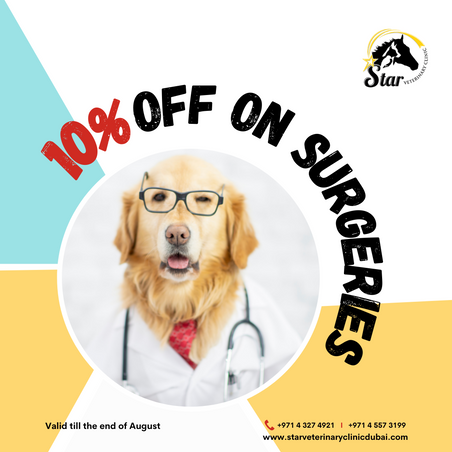 10% off on all surgeries