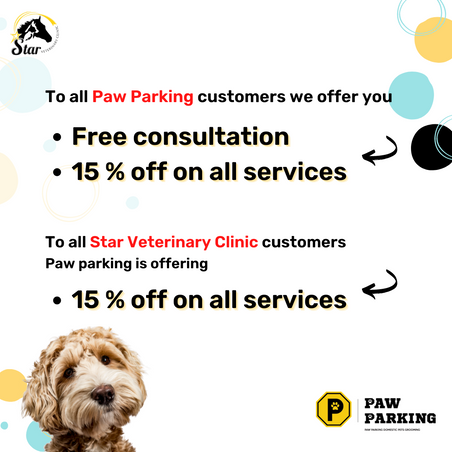 Paw Parking customers