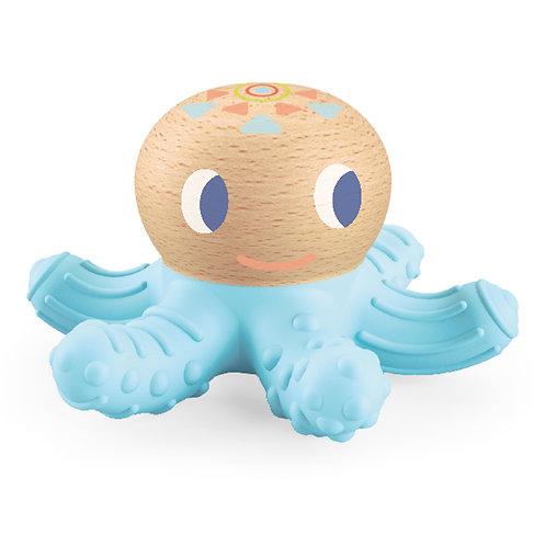BabySquidi