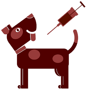 Dog Vaccine for Jackson Hwy Veterinary Clinic, Inc.