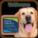 Vetsource's Brand for Jackson Hwy Veterinary Clinic, Inc.