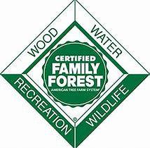 Family Forest.jpg