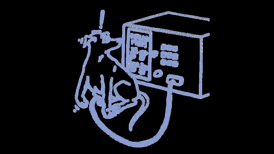 pregnant dog illustration with ultrasound