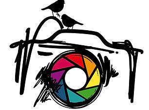 Philippe Bro_Logo_Browser_Wordpress.jpg