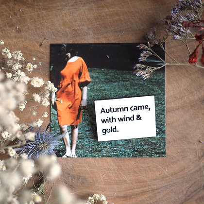 Autumn came with wind and gold