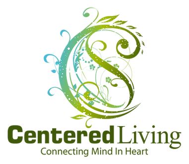 logo of yin yang symbol