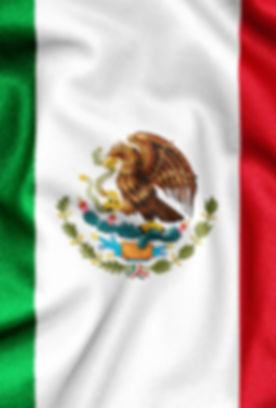 Fabric texture of the flag of Mexico
