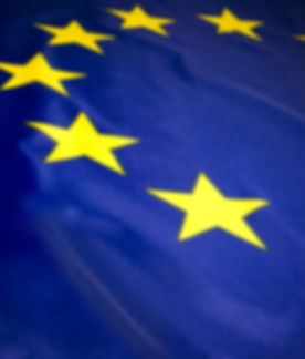 Flag of the European Union.jpg