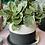 Thumbnail: Large Jesmonite plant pot