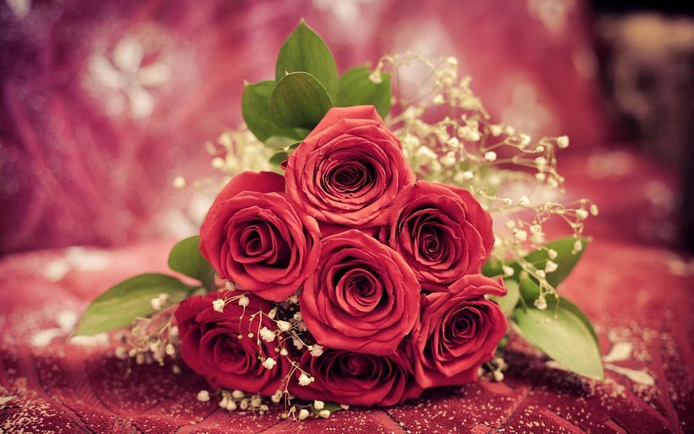 Hoa hòng quà tặng sinh nhật cho người yêu