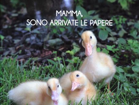 MAMMA SONO ARRIVATE LE PAPERE
