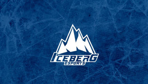 Verbal Agreements and Detrimental Reliance: What Went Wrong with Iceberg Competitive Esports?