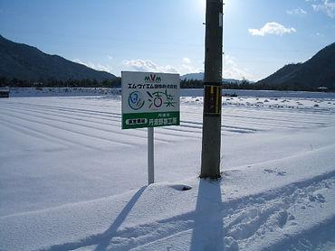 冬の丹波野菜工房
