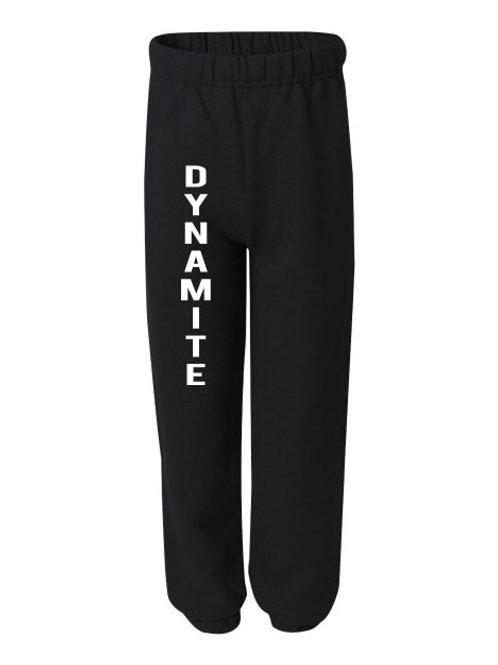 Dynamite Sweat Pants