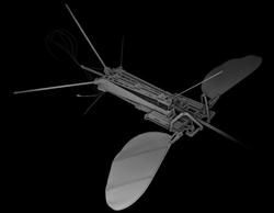 micro_bio_flying_robot_miniature