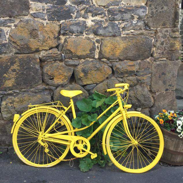 Village Bike