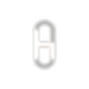 Hubhopper logo.png