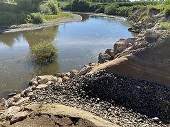 Waipa River.jpg