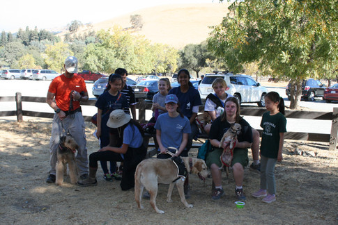 The 2018-2019 Hiking Proejct