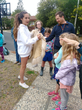 One of the Farm Animal Fun Teen Leaders showing the project members the hair of an Angora Goat.