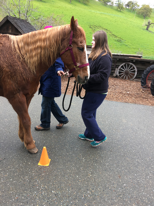 A Tassajara Member learning how to show a horse at Showmanship Clinic.