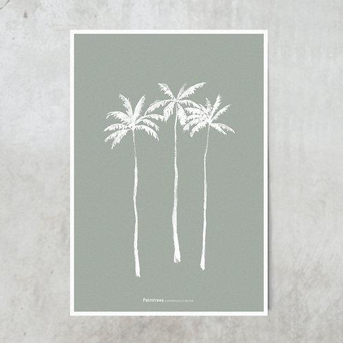 Palmtrees | Green