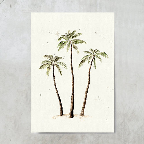Palmtrees color | Poster