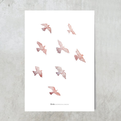 Birds terracotta | Tuinposter 300x420mm