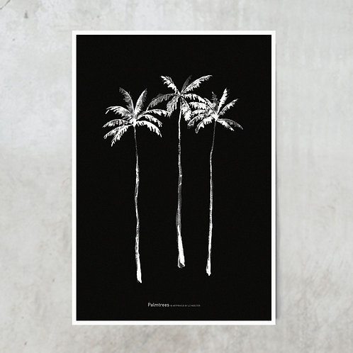 Palmtrees | Black