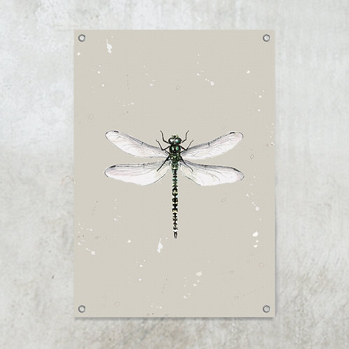 Dragonfly   Tuinposter