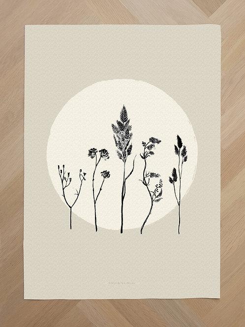 Canvas | Circle flowers beige