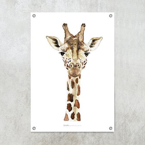 Giraffe | Tuinposter