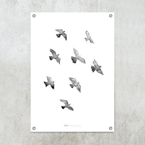 Birds black | Tuinposter 70x100cm