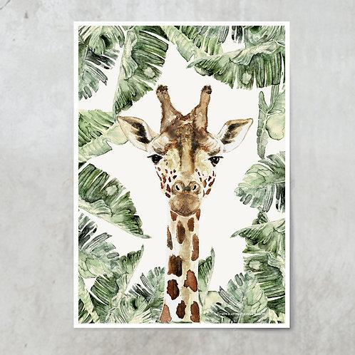 Giraffe Strelitzia