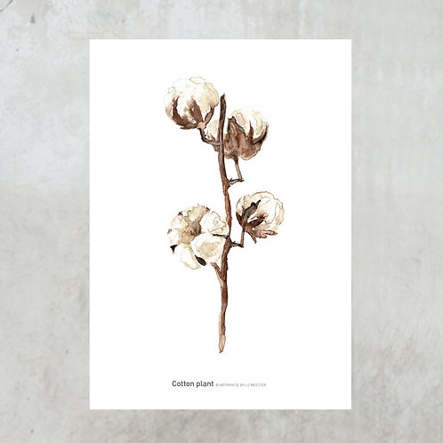 Cotton twig | Tuinposter 300x420mm
