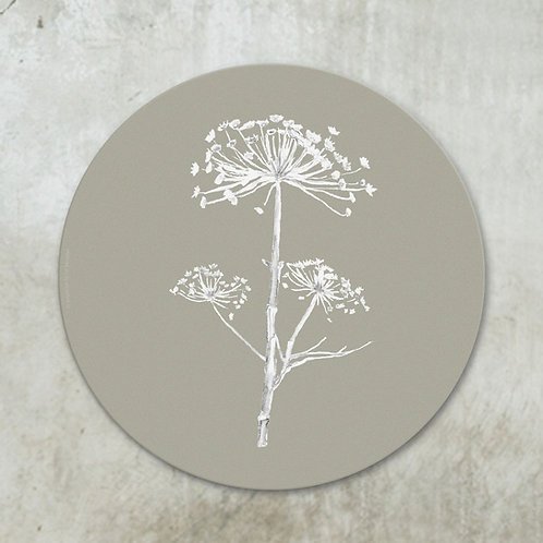 Dried hogweed white on taupe | Deco circle
