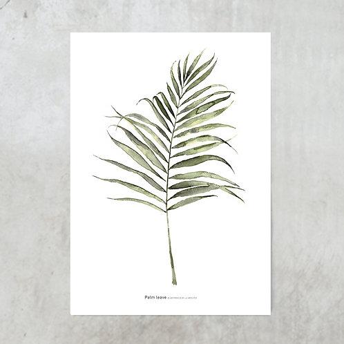 Palm leaf | Tuinposter 300x420mm