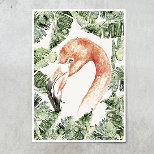 Flamingo Strelitzia