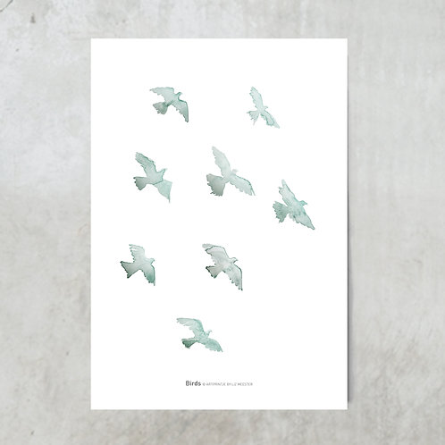 Birds mint | Tuinposter 300x420mm